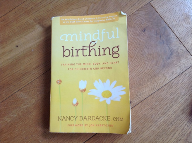 Mindful birthing book