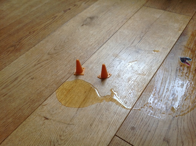 Puddle on wooden floor with two little cones next to it
