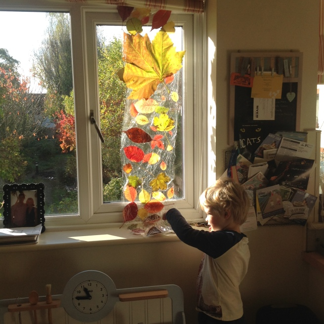 boy standing at window pointing to leaf curtain (leaves in clingfilm)